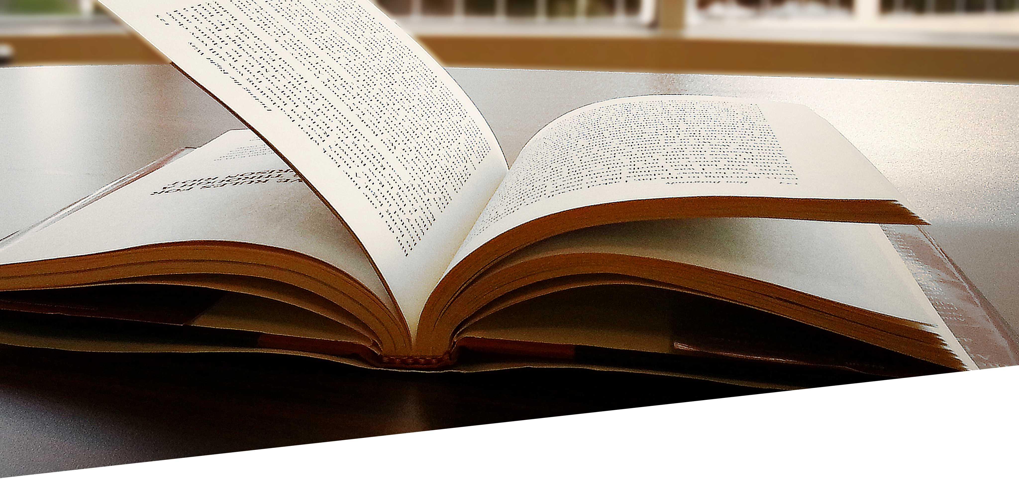 CUBICIBUC Book_dgl